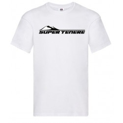 Camiseta BMW F850GS
